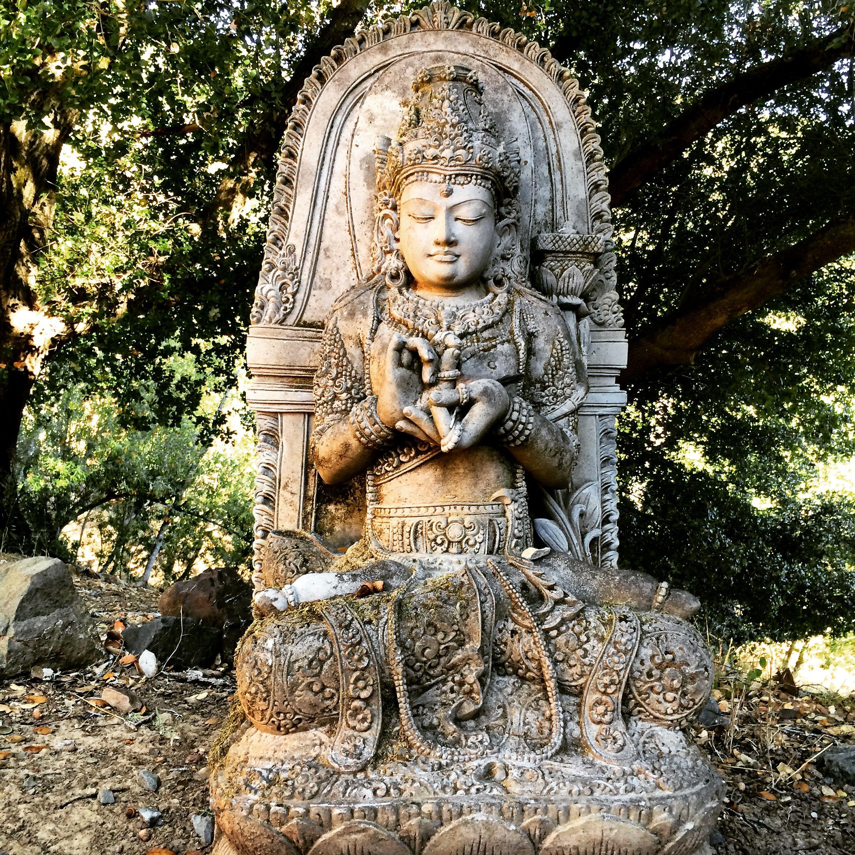 prajna dharma